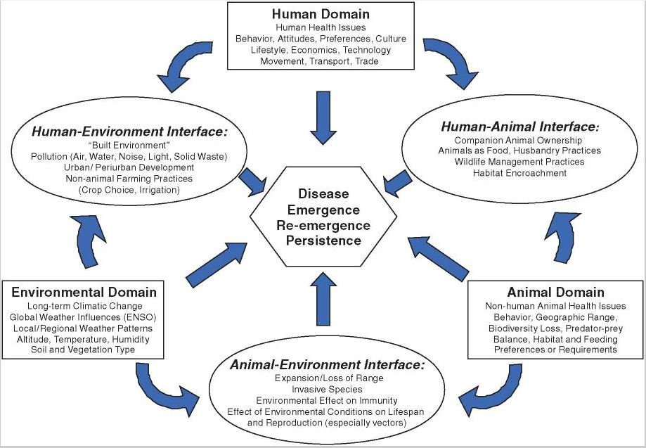 socio economic cultural and environmental issues in Edewor, patrick and jegede, a e (2014) socio-cultural and demographic issues in e-business conflict resolution: the nigerian case.