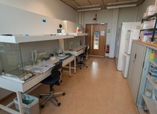 Animal Ecology Laboratory