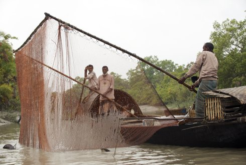 Community Based Fish Culture in the Public and Private Floodplains of Bangladesh
