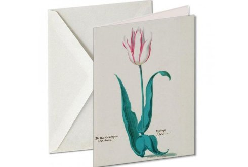 Gift cards Tulpenboek 1637