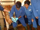 Trainees on NUFFIC NFP Tailor Made Training Course Intensive dairy farming Sri Lanka exercising hoof care