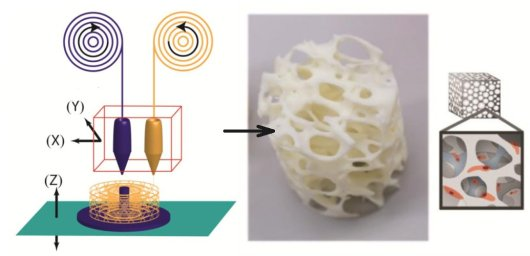 Build a high resolution 3D printer which is capable of building composite scaffolds from both stiff biodegrable and soft biocompatible polymers.