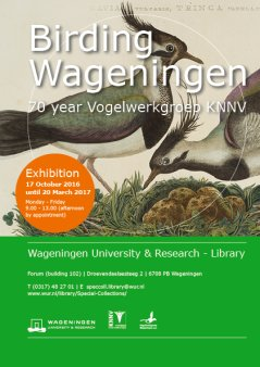 Birding Wageningen, 17 Oct 2016 until 20 March 2017