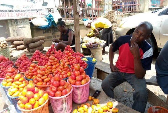 Workshop 'Results market study Seed, Vegetables and potato Nigeria'