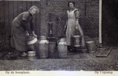 Dairy History: Cleaning the milk cans, 1910