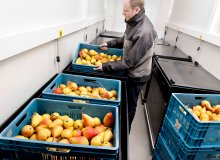Postharvest fruit and vegetables