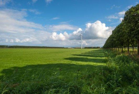 Aandeel blijvend grasland 57% op Koeien & Kansen-bedrijven