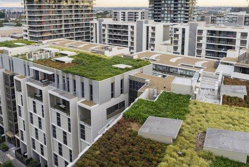 Groene Daken Voor Klimaatbestendigheid Wur
