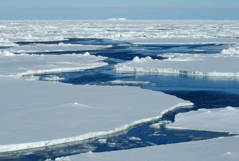 Chlamydia-related bacteria discovered deep below the Arctic Ocean