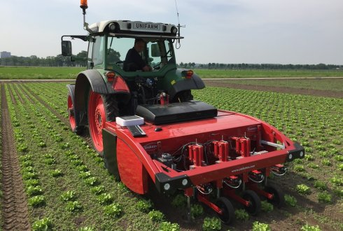 Intra-row weeding possible with vision systems