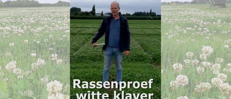 Film over betere graslandproductie door onderzoek naar rassen van witte klaver