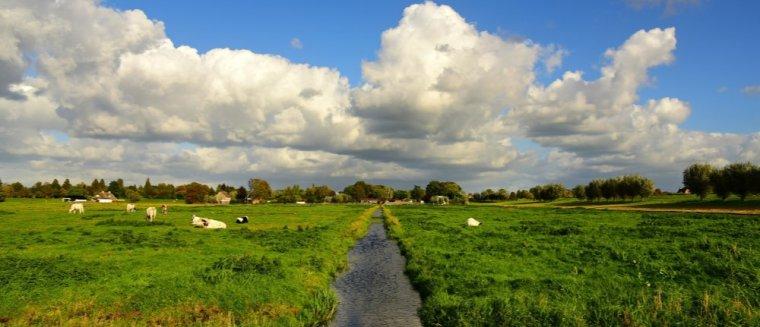 Van ongeloof naar stappen zetten: Schoner slootwater dankzij slimme software