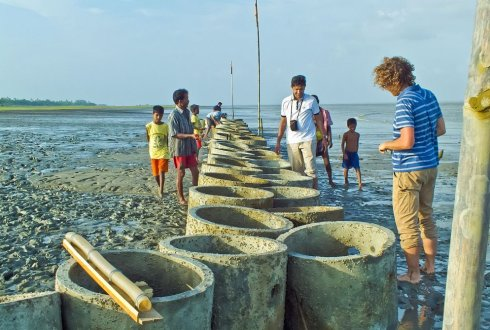 WIAS Seminar: 'Eco-engineering for coastal resilience'