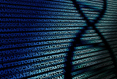 Next generation DNA sequencing based strategies; towards a new era for the traceability of endangered species and genetically modified organisms