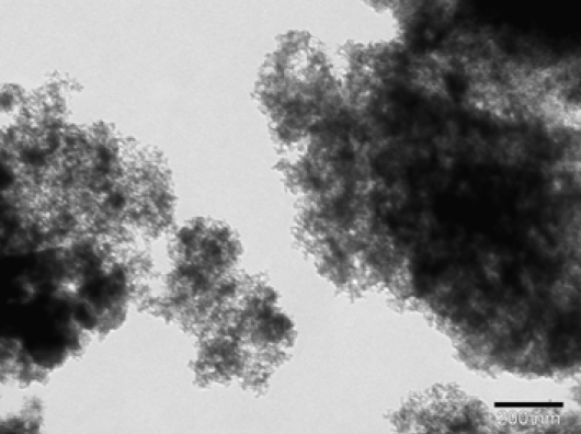 Fig.1: TEM image of the Ni/AC catalyst.