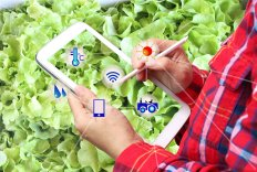 Course towards Data-driven Agri-Food Business