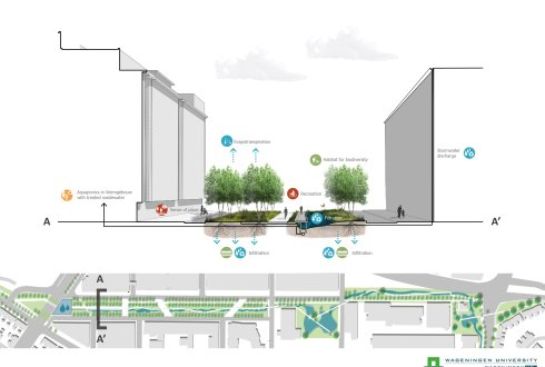 Designing a waste water treatment installations as an urban park on Strijp S in Eindhoven - Interdisciplinary MSc thesis project