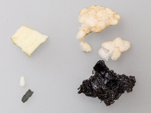 Plastics from the stomach of the fulmar found by Raymond Besant (nr Ork-2017-001)