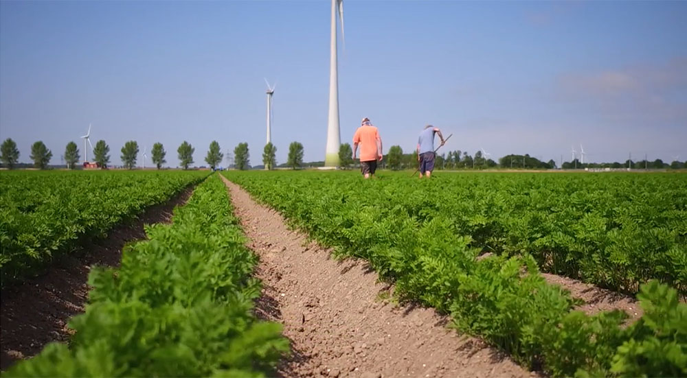 Circular agriculture: a new perspective for Dutch
