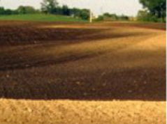 Tillage erosion: OM-rich topsoil is transported downslope.