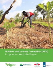 Nutrition and income generation (NIGI) in Uganda's West Nile Region