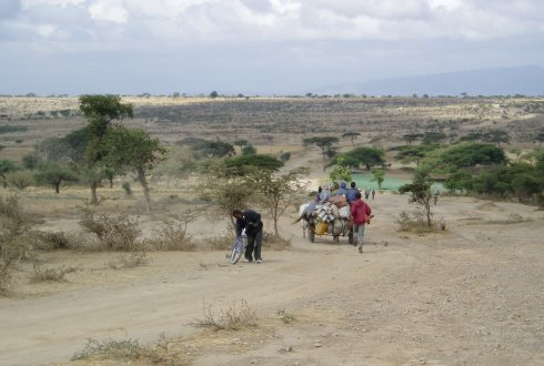 Typical landscape of the Central Rift Valley