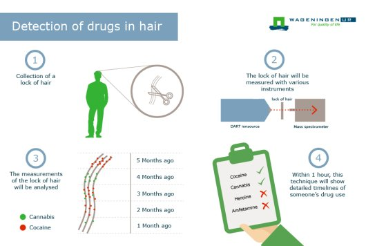 Process detection of drugs in hair