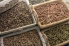 Transfer models for harmful substances in animal feed online now