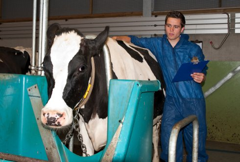 Future Career Animal Sciences WUR