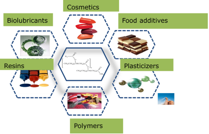 This figure illustrates some applications of estolides and hydroxy fatty acids derivatives in food, lubricant, cosmetics and polymer industries.