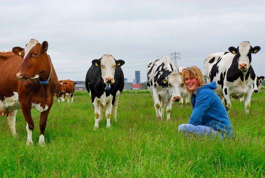 Boerderijdag nieuw Dairy Campus op 28 mei a.s.