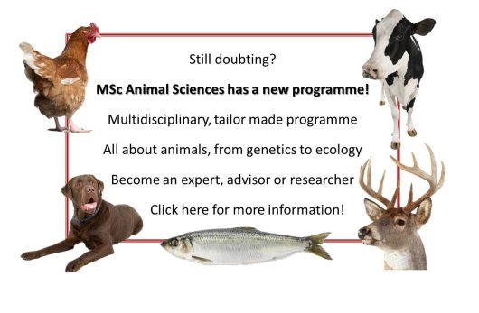 New Animal Sciences programme