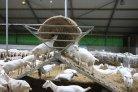 Meten van methaan op stalniveau_veehouderijenklimaat