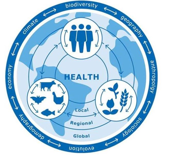 Global One Health