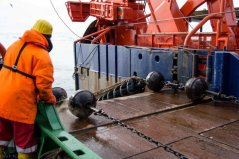 The bottom trawl is being deployed (Photo Ulrich Küster)