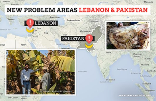 New problem areas Lebanon and Pakistan