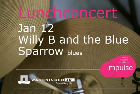 Willy B and the Blue Sparrow