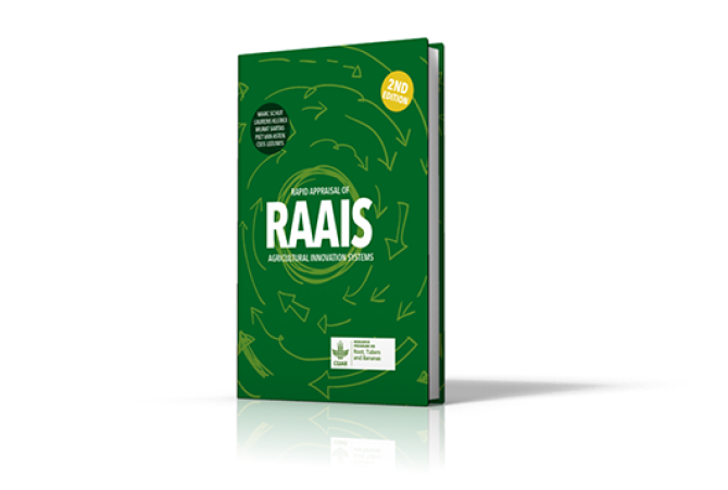 RAAIS Toolkit (second edition)