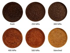 Figure: Baked mealworm paste is dark brown for fresh and 250-300 MPa, compared to light brown for 400-500 MPa and light brown for blanched treatment.
