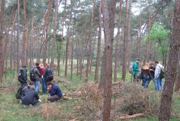 Students making a forest inventarisation for the Introductionary Field Course at Zuid-Ginkel, the Netherlands ©Jan den Ouden