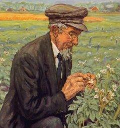 Geert Veenhuizen, aardappelkweker die vooropliep met het kruisen van aardappelrassen (1857-1930)