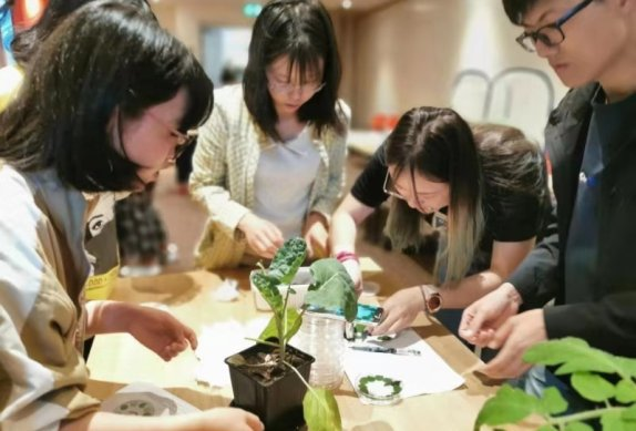 Tailor-made Summer School for Nanjing Agricultural University