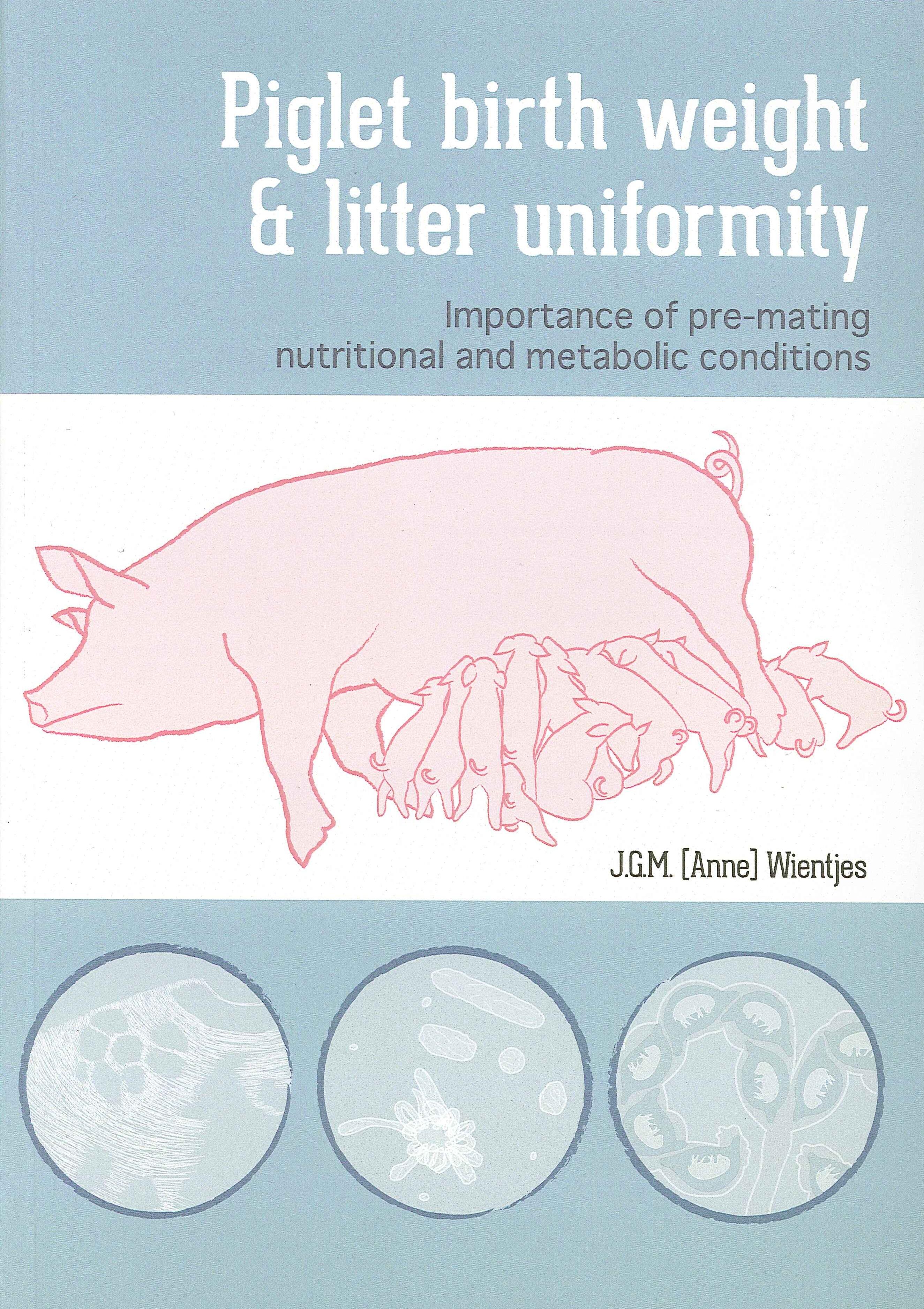 uniformity thesis