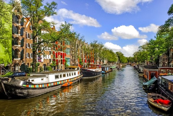 Social Dutch 2 online course
