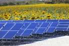 Characterisation of existing solar parks: biodiversity development and integration in the landscape