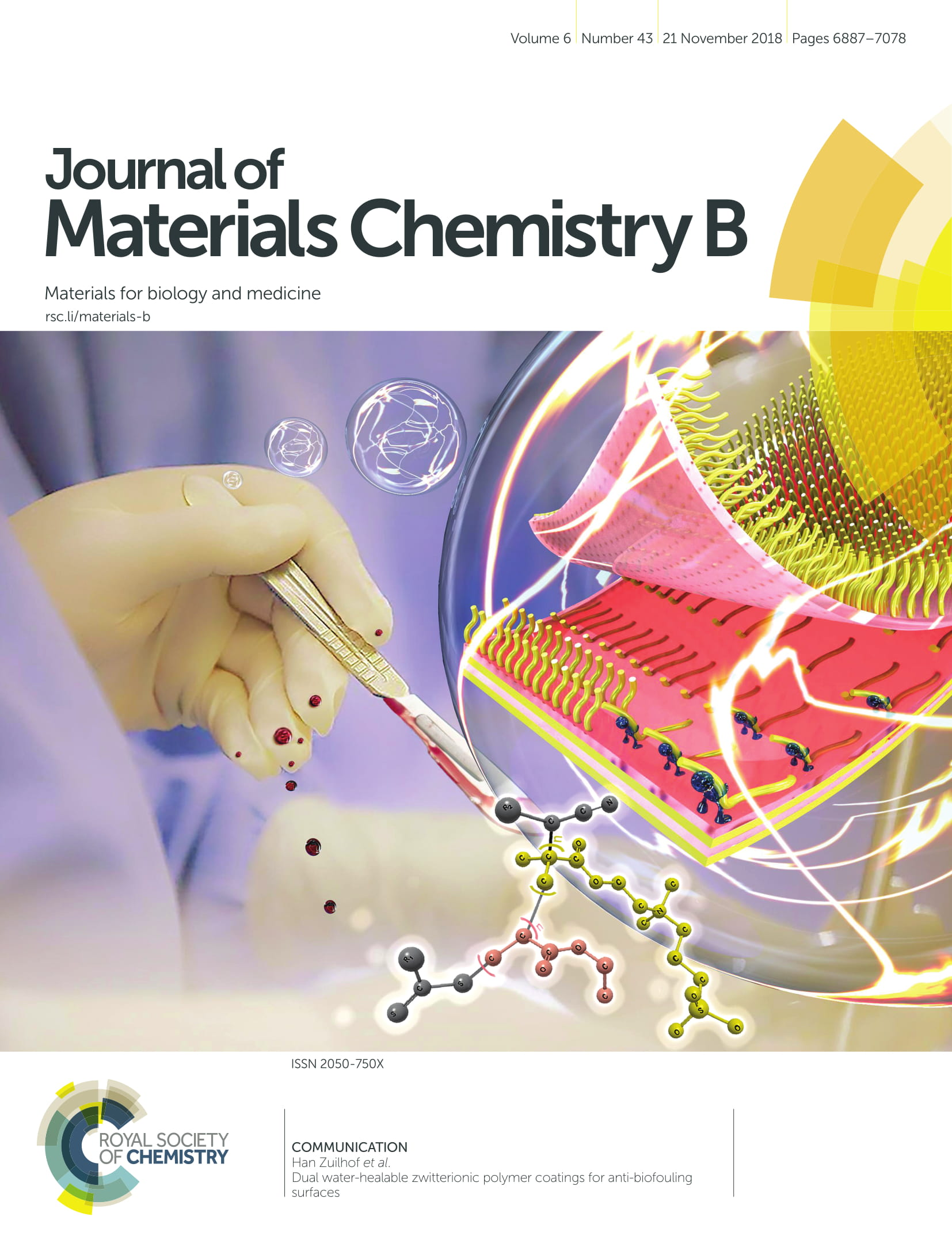 cover Journal of Materials Chemistry B-1.jpg