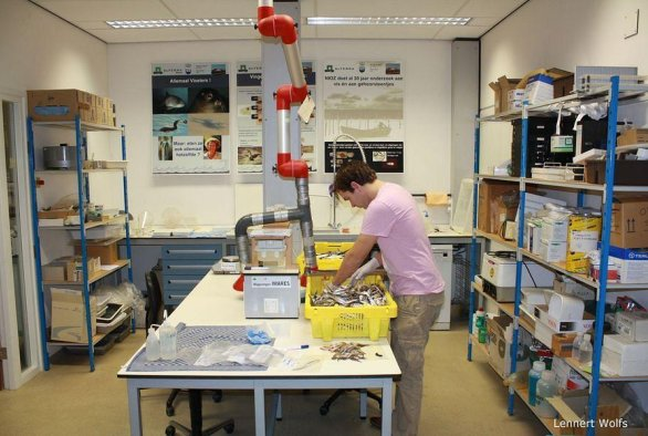 Facilities, Products and Services of Wageningen Marine Research