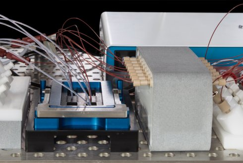 New project to develop intestine on a chip