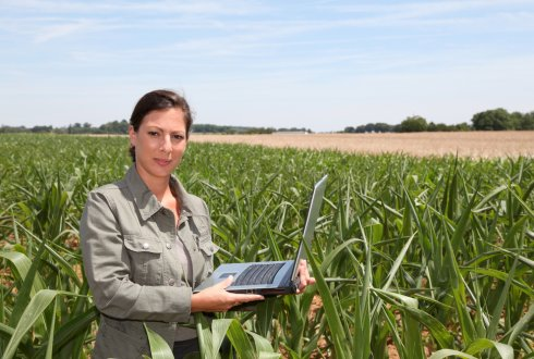 Conquering challenges through Smart Farming