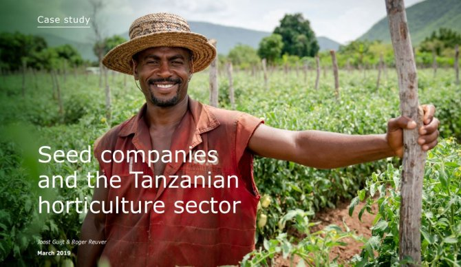 Case study: Seed companies and the Tanzanian horticulture sector